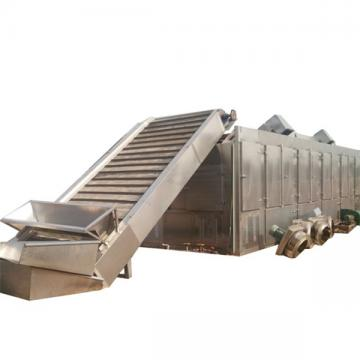 Industrial Continuous Microwave Dryer